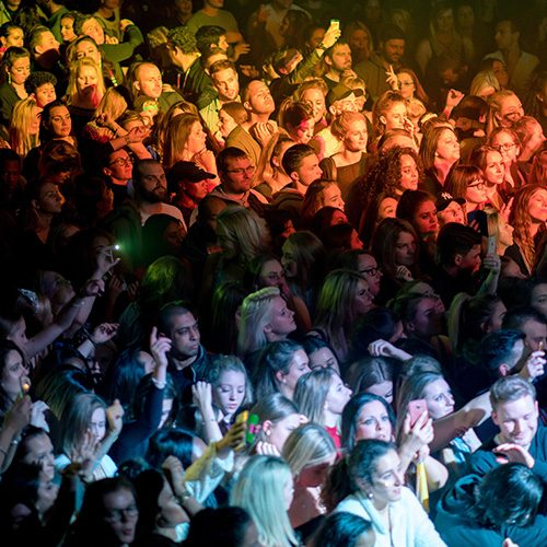 crowd of people at concert